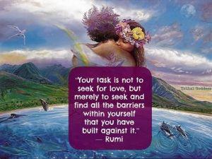 Rumi don't seek for love..